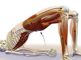 Лишний вес: 6 упражнений, ускоряющих метаболизм