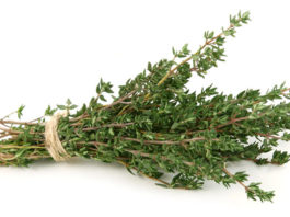 Трава, которая лечит более полусотни недугов — дар Бога